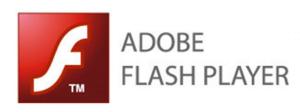 Adobe Flash Player proqramı nə üçün istifadə olunur?