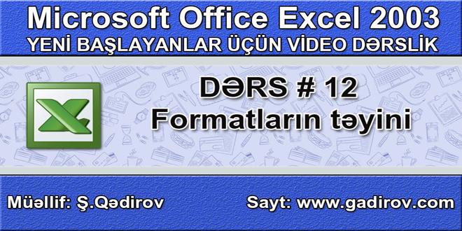 Excel 2003-də formatların təyini