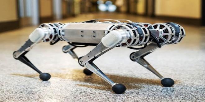 Ən sürətli robot-gepard