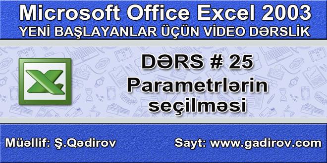 Excel 2003-də parametrlərin seçilməsi