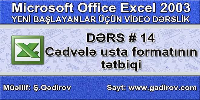Excel 2003-də usta formatı