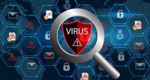 Virusla mübarizə tədbirləri