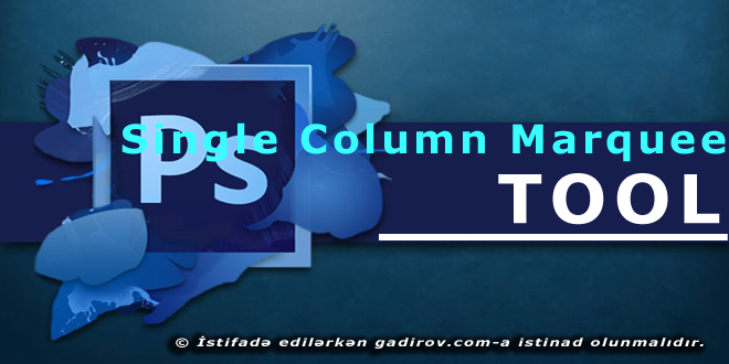 Single Column Marquee Tool aləti