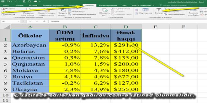 Excel 2016 proqramında filterlərdən istifadə