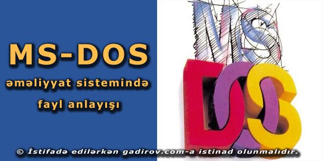 MS-DOS əməliyyat sistemində fayl anlayışı