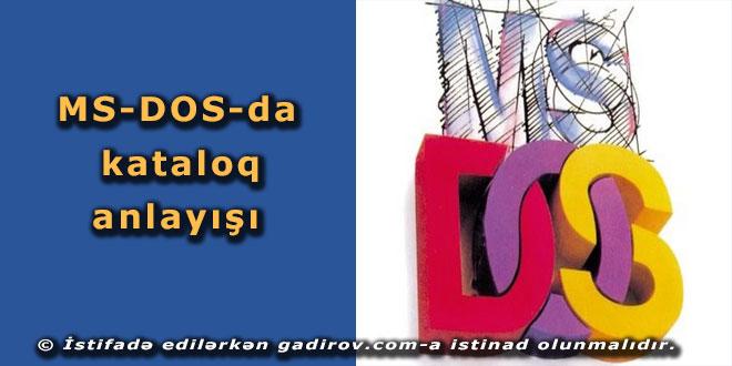 MS-DOS-da kataloq anlayışı
