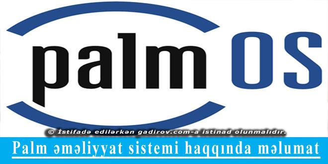 Palm əməliyyat sistemi haqqında məlumat